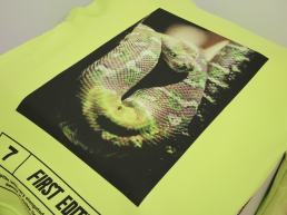 fotoprint op T-shirt voorbeeld